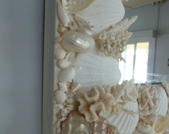 SHELL & CORAL MIRROR
