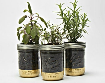 Gold Digger Herb Garden Kit
