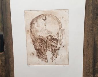 Study of a Skull Print