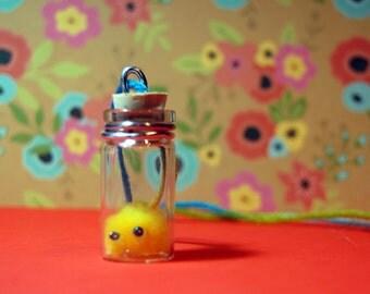 Pygmy puffs in a bottle