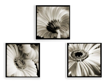 Set of 3 Square Prints, Floral Wall Art, Black and White Flower Prints, Set of 3 Wall Art, Romantic Art, Bedroom Wall Art, Triptych Wall Art