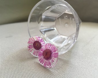 Pressed daisy flower in resin earrings