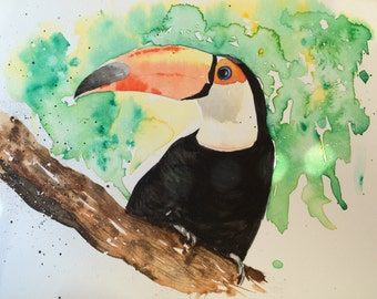 Toucan in watercolours