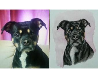 Custom Pet Portrait... Color