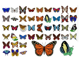 42 Butterfly Machine Embroidery Designs, Butterfly Applique, Applique Design, Animal Pattern, Insect Butterflies, INSTANT DOWNLOAD