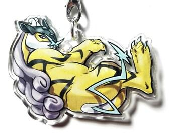 Raikou Pokemon charm