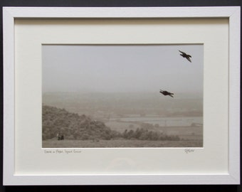 Grouse in Flight, Square Corner - Photographic Print