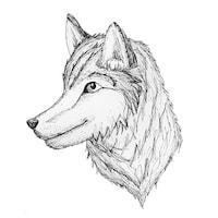 whatsthetimemrwolf