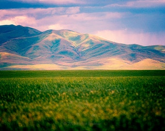 Idaho Landscape, Mountains, Nature Photography, Fine Art Photography,  Purple and Green Decor, Crops, Agriculture, Farming, Colorful Photos