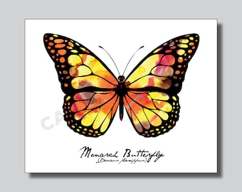 Animal Print - Monarch Butterfly