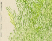Nani Iro Kokka Japanese Fabric Wild elegant wind - wave green - 50cm