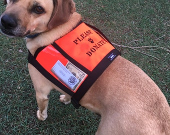 PLEASE DONATE fundraising / adoption vest with large clear pockets for donations - fund raising vest, money vest, hunter orange dog vest