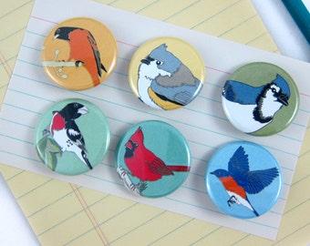 Songbird Pins--Easter Backyard Birds--Set of 6