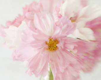 Flower Photo, Pink Floral Wall Art, Cosmos Print, Pink Floral Art Print, Nursery Art, Bedroom Decor, Pink Daisy Art Print