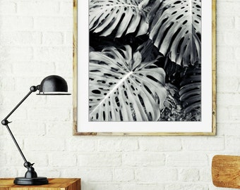 "Tropical Plant Leaves Monstera Leaves Black and White Photography Tropical Wall Art ""Monstera"""