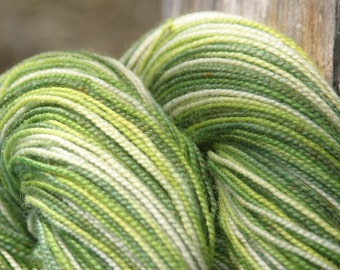 Handpainted Twist Sock Yarn - 80/20% Superwash Blue Faced Leicester Wool / Nylon - Rebirth