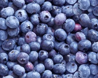 Blueberry Food Berry Good Elizabeth's Studio Fabric 1 yard