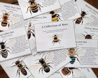 A Collection of Bees - Cards - Digital - Printable PDF