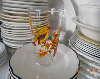 Vintage glass with 2 birds on it clear yellow orange green brown