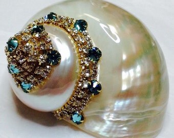 "4"" Jewel SeaShell Aqua All Swarovski Crystals  BEST SELLER! Gold Plated Settings"