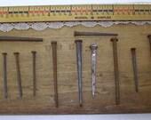 Baker's Dozen Vintage Authentic Square Head Nails-Rusty Treasures
