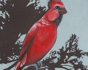 """Cardinal - bird art print, 6"""" x 6""""."""