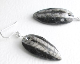 Prehistoric Orthoceras Earrings, Stone Cephalopod Fossils, Science Jewelry