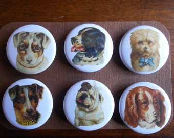 Dog Faces-set of Six (6)-Decorative MAGNETS