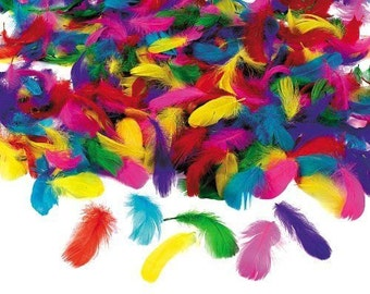 600 Feathers Bulk Lot Assortment
