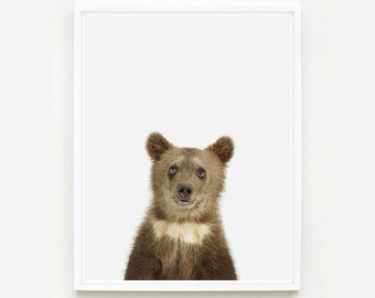 Animal Art Print. Bear Cub Little Darling. Safari Animal Print. Animal Nursery Decor. Baby Animal Photo.