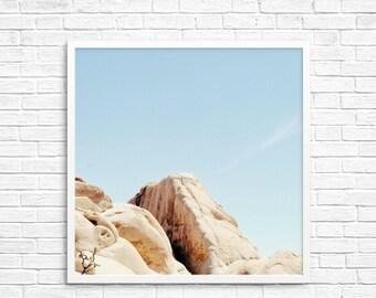 BUY 2 GET 1 FREE California Photography, Joshua Tree Photograph, Desert Photo, Brown Tone, Yucca Tree, Home Decor - Exploring the Desert