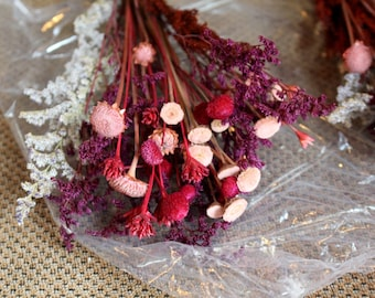Pink Margarita flowers-caspia-Pink Button-Hill flowers-Fuchsia-Princess Pine-Burgundy-2 Small bunches-YOU GET these exact 2 as shown