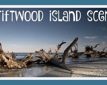 DRIFTWOOD ISLAND Scented Soy Wax Melts * Spicy * Citrus * Greenery * Floral * Lavender * Jasmine * Woody * Musk * Moss * Maximum Scented