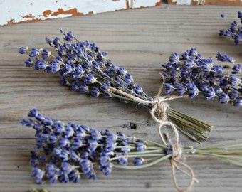 12 - Dried Lavender Bunches /  Mini Lavender Bouquets / Lavender Sprigs / Wedding Decor /Shower Decor