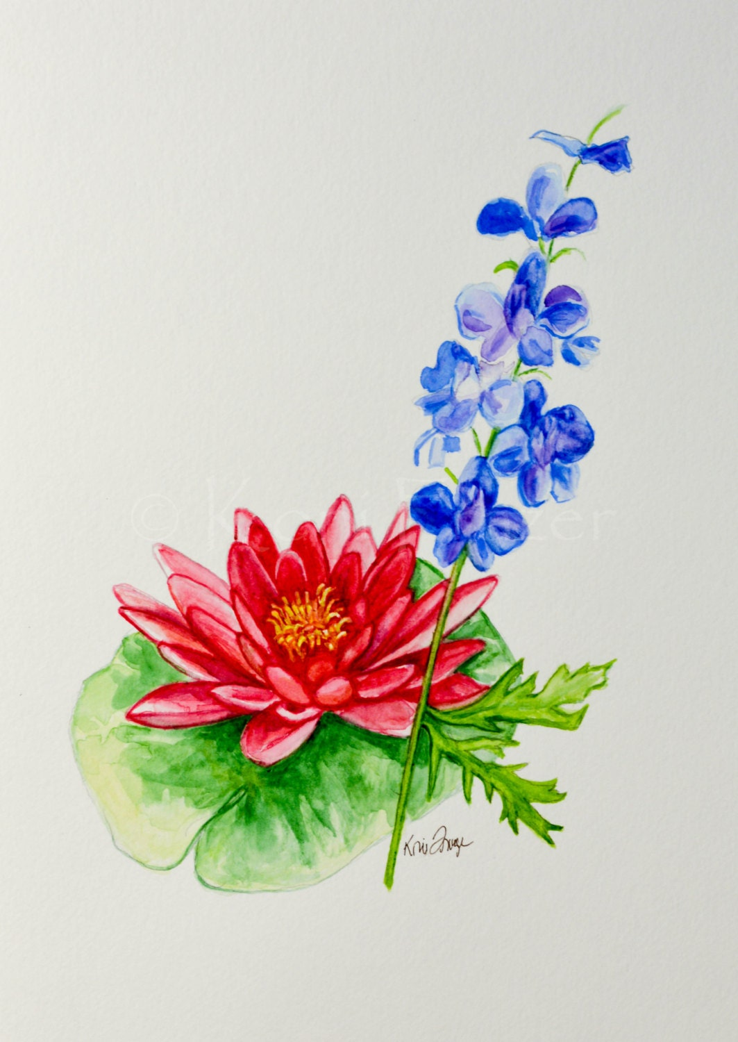 Water lily and Larkspur July birthday flower by KoniFrazer ...