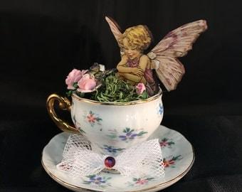 Fairy in a Tiny Teacup!