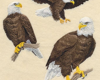 BALD EAGLE COLLAGE - Machine Embroidery Quilt Block (AzEB)