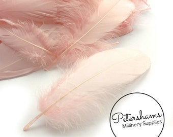 Loose Goose Nagorie Feathers for Millinery and Hat Trimming - Light Pink