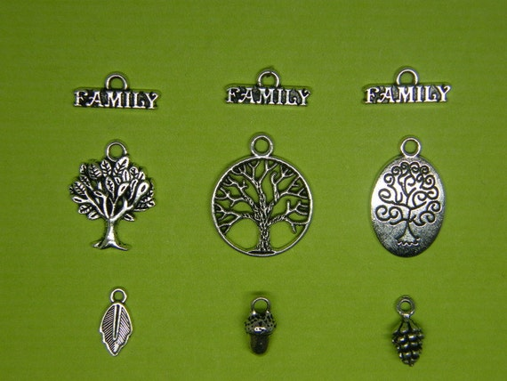 The Family Collection - 9 antique silver tone charms CC8