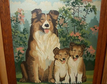 Vintage Paint by Number Framed Image Three Collie Dogs Mother Dog and Two Puppies