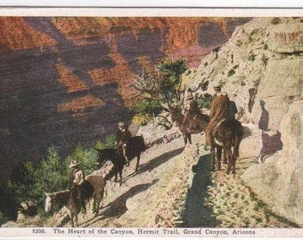 Horse Riders Hermit Trail Grand Canyon National Park Arizona 1920c postcard