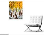 Dancing Aspen Fine Art Print, Golden Autumn Leaves Flourish Amongst Granite Boulders, Bright Seasonal Fall Colors, Ltd Ed/Signed, Wall Art