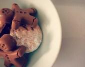 Santa Snacks - Soap - Sugar Cookie & Gingerbread