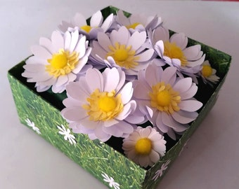 3d Origami Daisies flowers in box