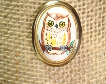 1970s Hand Painted Owl Pin.