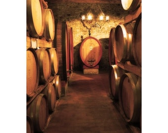 """Fine Art Color Travel Photography of Tuscany - """"Wine Cellar at a Brunello Winery in Tuscany"""""""