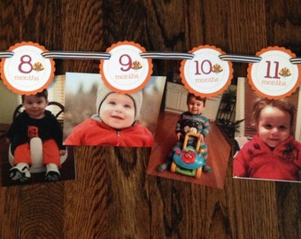 READY to SHIP Dapper and Darling Turkey Collection: Just Born/0-12 month First Birthday Photo Picture Banner Thanksgiving Turkeys First Year