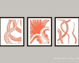 Octopus Prints - Set of 3 unframed prints - 5x7 or 8x10 - Nautical Wall Art - Octopus Wall Art - Nautical Decor - Octopus Art