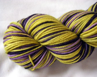 Superwash Merino Nylon Sport - Self-Striping Penelope Sport - Pansies