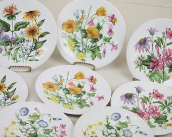 """8 Wedgwood Plates Wild Flowers of the United States 4 Patterns Lunch Salad 8 7/8"""" Luncheon Decor Gift Garden Lover Florals"""